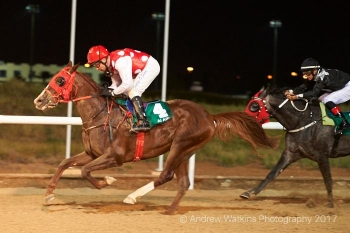A double for AL ASAYL in AL AIN in the PA Maiden over 1800m and 1400m!! (on Friday December 8th)