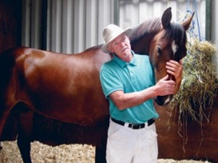 Purebred Arabians ready to impress