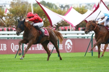 BACK TO BACK WINS IN THE QATAR G2 PRIX DANIEL WILDENSTEIN FOR