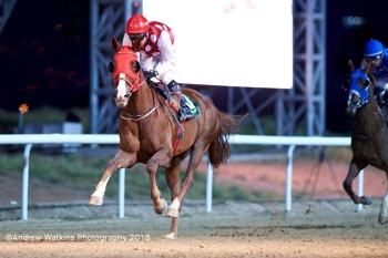 TH RICHIE PROGENY SHINE IN AL AIN! on Feb 16th 2018
