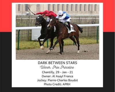 DARK BETWEEN STARS wins in Chantilly on 29/01/21