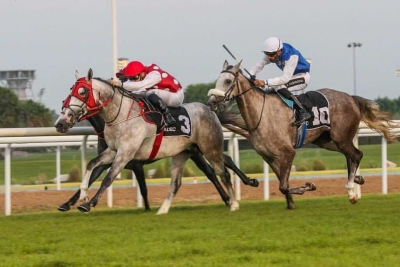 MUJEEB (DAHESS X NYMPHEA DU PAON) BREAKS HIS MAIDEN IN ABU DHABI UPON DEBUT
