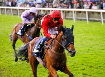 Bateel's class act through Haydock ground to reach the summit in Pinnacle Stakes