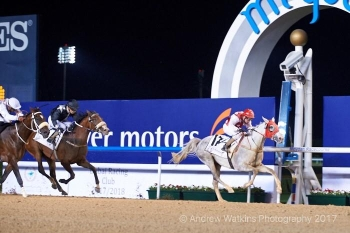 ANOTHER WIN FOR SUPER FILLY MAWAHIB on December 21st!