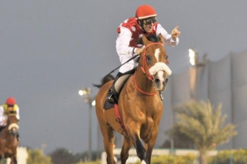 Al Asayl wins breeder award for 2011-2012 season.
