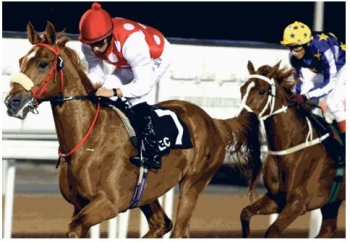 Seraphin Du Poan Romps Home in the UAE Derby
