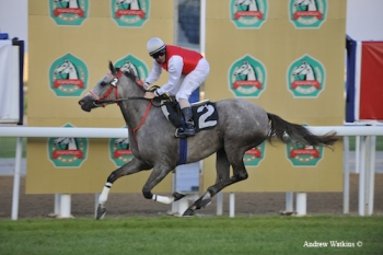 Anood Al Ghaid wins the first Arabian race in Abu Dhabi for the 2009-2010 season.