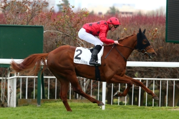 FIRST THOROUGHBRED WINNER OF THE SEASON FOR AL ASAYL!