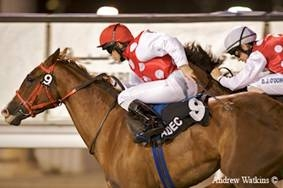 ElMalak El Waheed and Shoof Elajab score a double in Abu Dhabi