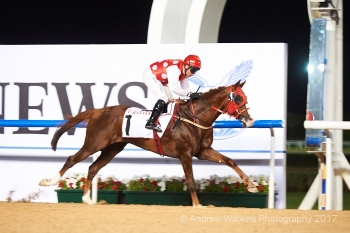TH RICHIE PROGENY ON FIRE!! AS RB TORCH SMOKES HIS FIELD IN MEYDAN! GR 2