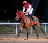 RB MONEY TO BURN CLOSES OFF THE UAE SEASON WITH A BANG!