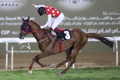 FANTASTIC START TO THE 2018-2019 PUREBRED ARABIAN RACING SEASON IN ABU DHABI!