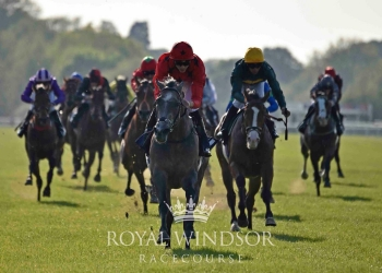SILVER QUARTZ WINS IMPRESSIVELY SECOND TIME OUT AT WINDSOR!