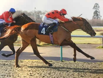 DE MEDICI WINS FIRST TIME OUT AT LINGFIELD PARK!