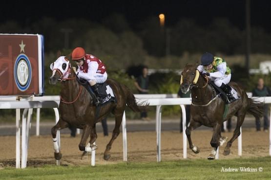 Abu Alemarat Hydra Silver Cup. Abu Dhabi.